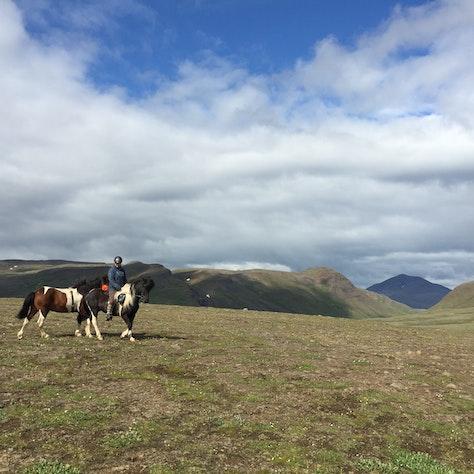 Paardrijtocht op IJsland