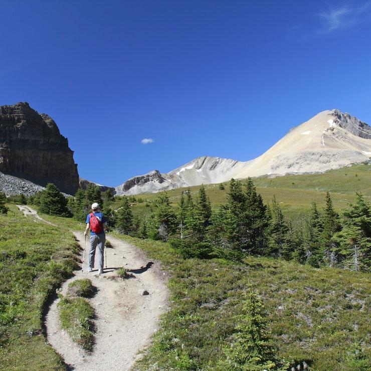 Hiking trail Jasper Nationaal Park