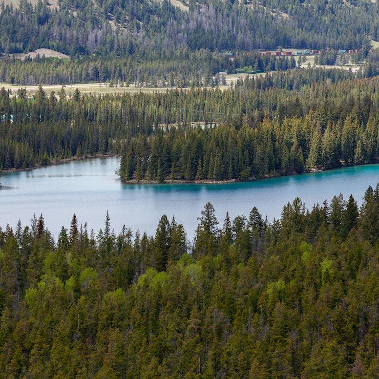Meer Jasper Nationaal Park - Menno Schaefer
