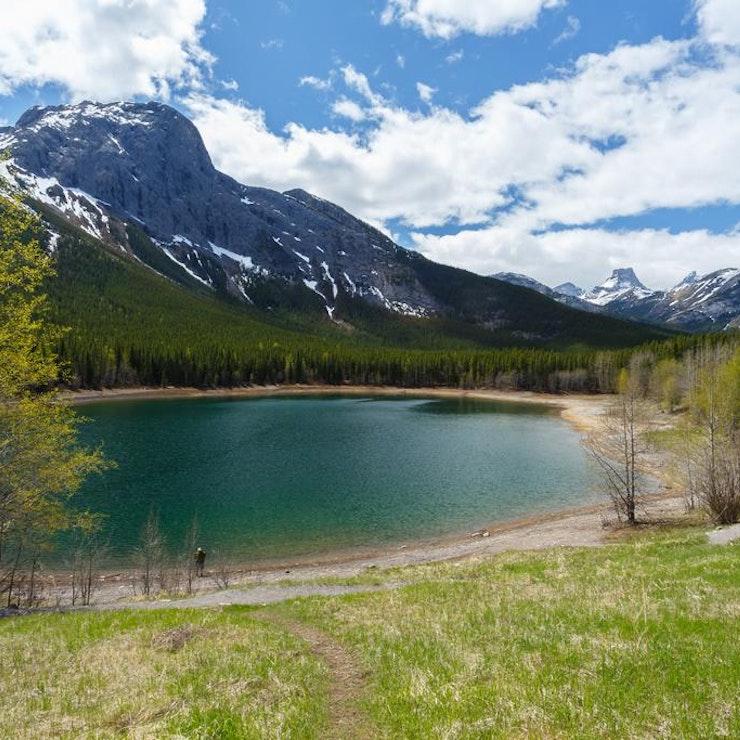 Tarn, tussen Jasper-Banff Nationaal Park