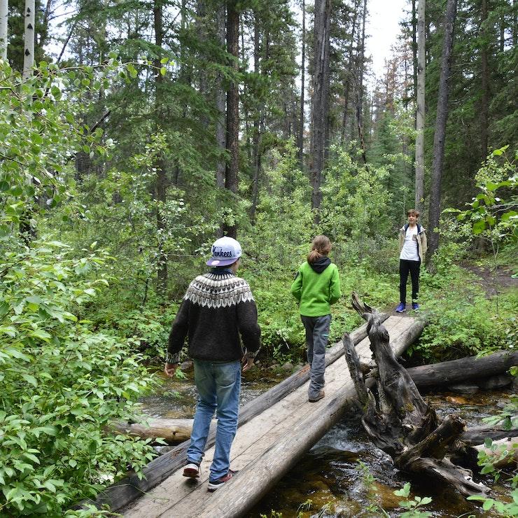 Natuur Jasper Nationaal Park