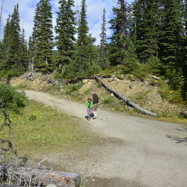 Cavell Meadows Trail, Jasper inside passage canada ferry