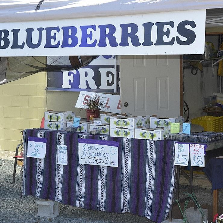 autorondreis West Canada blueberries