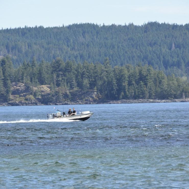 Vissersbootje, Campbell River