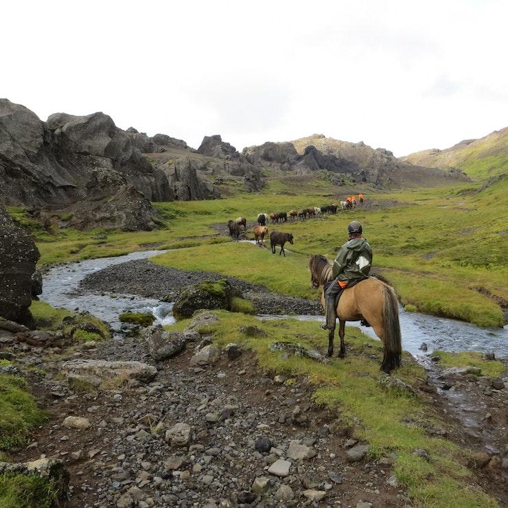 Paardrijden Golden highlights of the South paardrijtocht in Zuid-IJsland