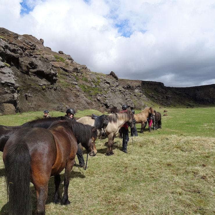 paardrijtocht in Zuid-IJsland