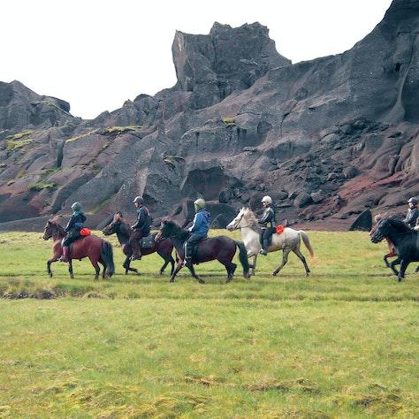 Paardrijden Golden highlights of the South, IJsland