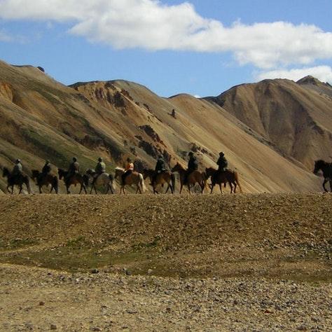 Paardrijden Landmannalaugar, IJsland