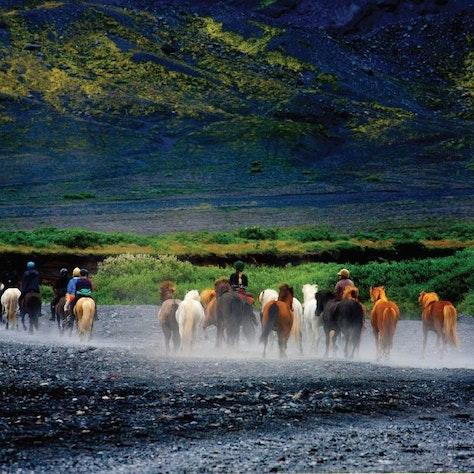 Paardrijden Þórsmörk, IJsland