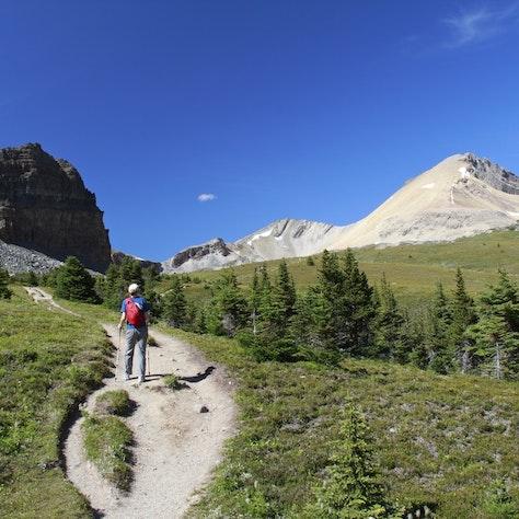 Hiking trail, Jasper Nationaal Park