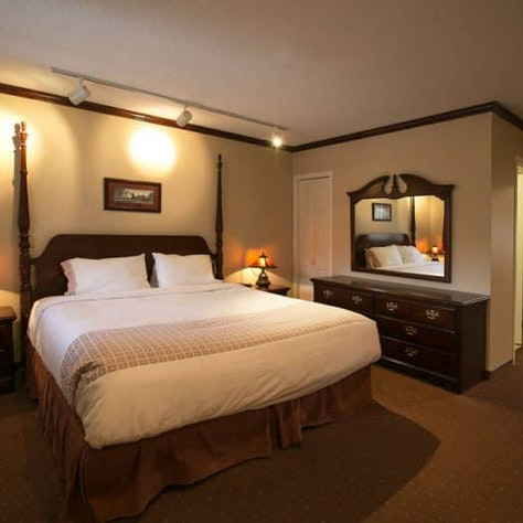 Wintersport naar Jasper Mount Robson Inn