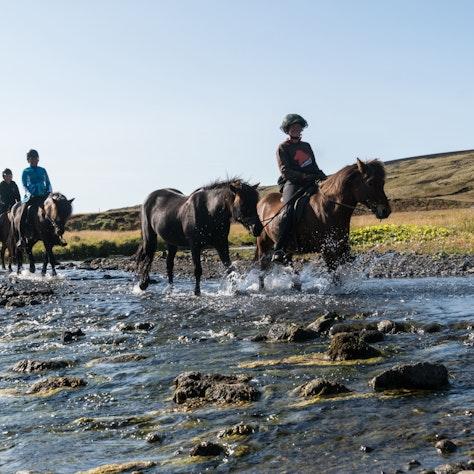 Paardrijden Around the Volcano, IJsland