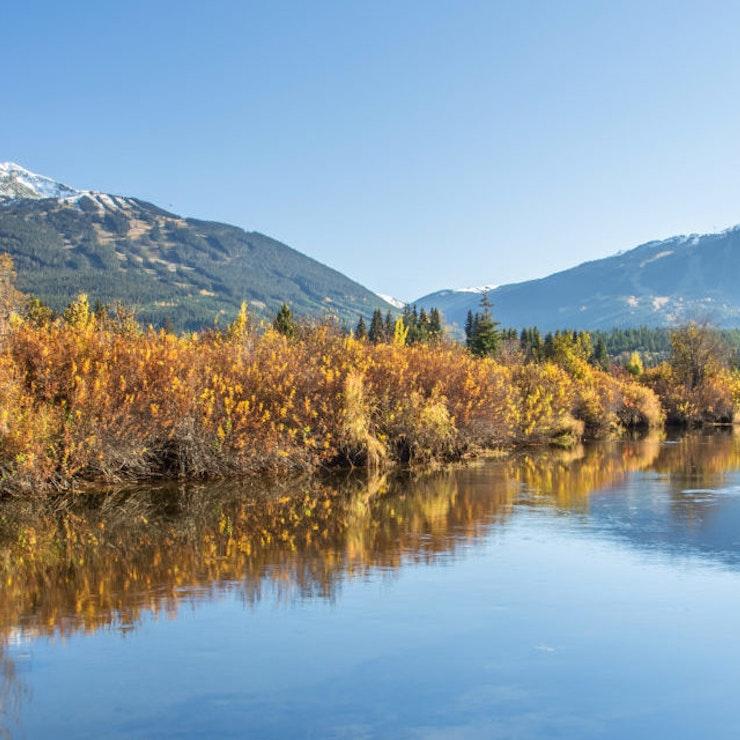 Gouden Dromen Rivier, Whistler Blackcomb resort