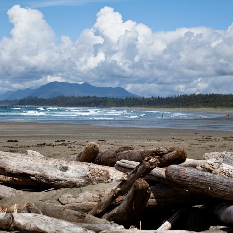 Drijfhout Vancouver Island