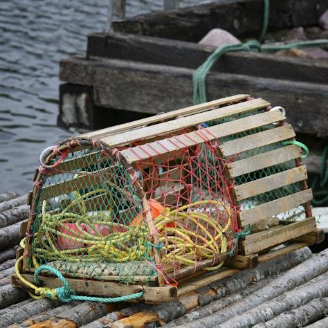 lobster trap Newfoundland
