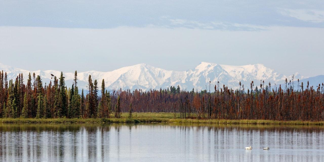 Mount McKinley, foto: Menno Schaefer