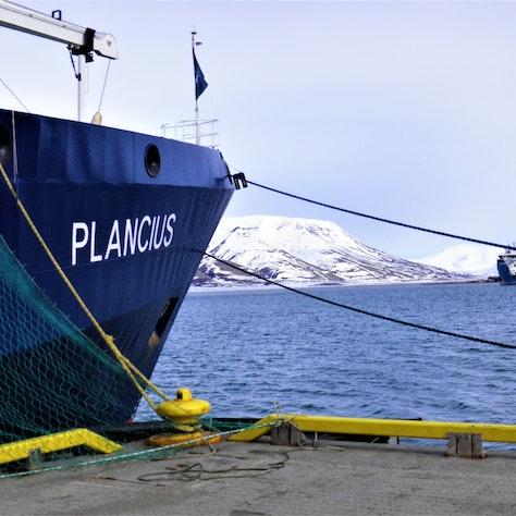 Plancius boot