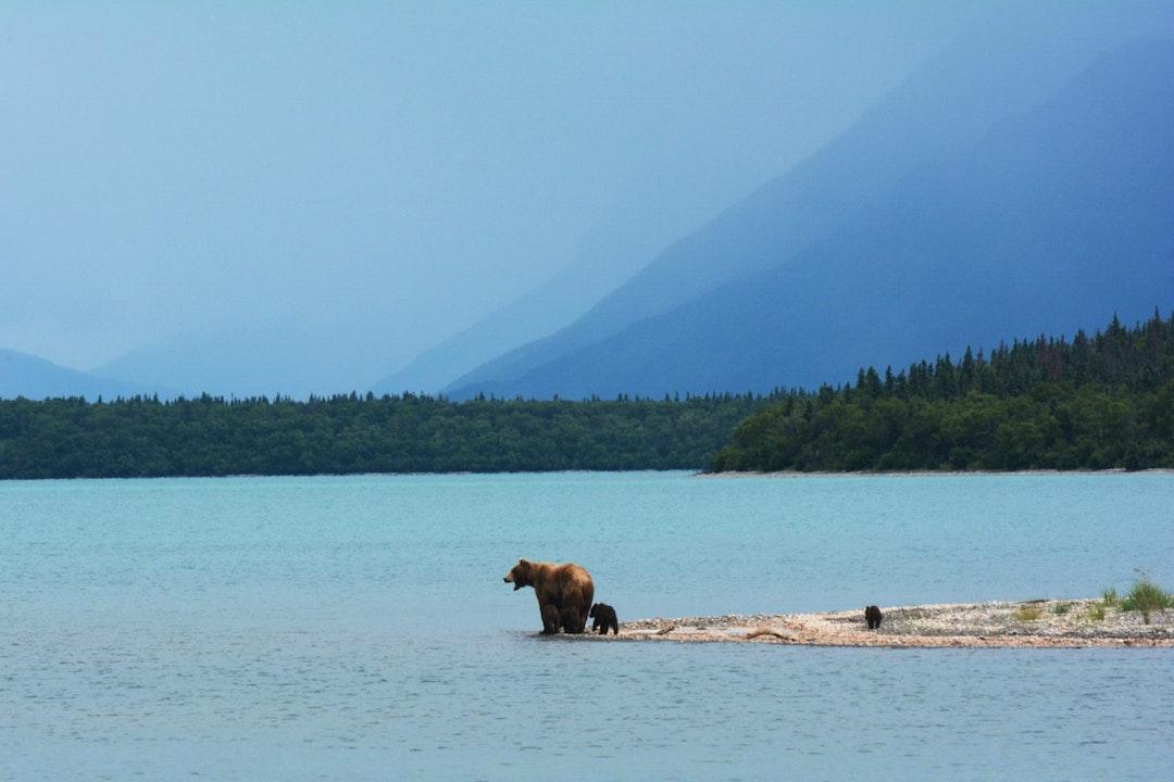 Vakantie Alaska
