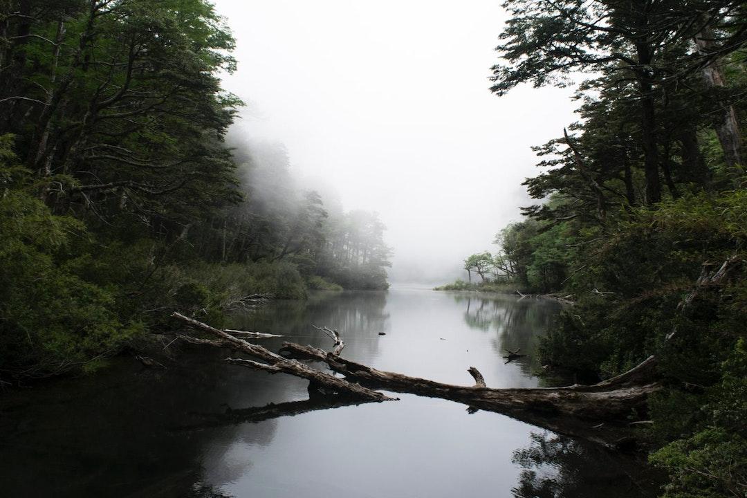 Huerquehue Nationaal Park