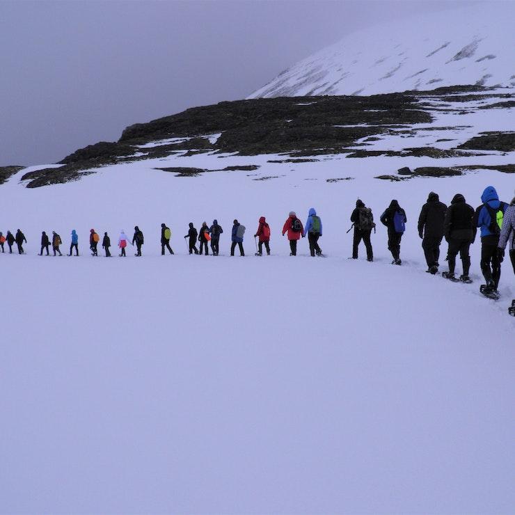 Sneeuwschoen-wandeling
