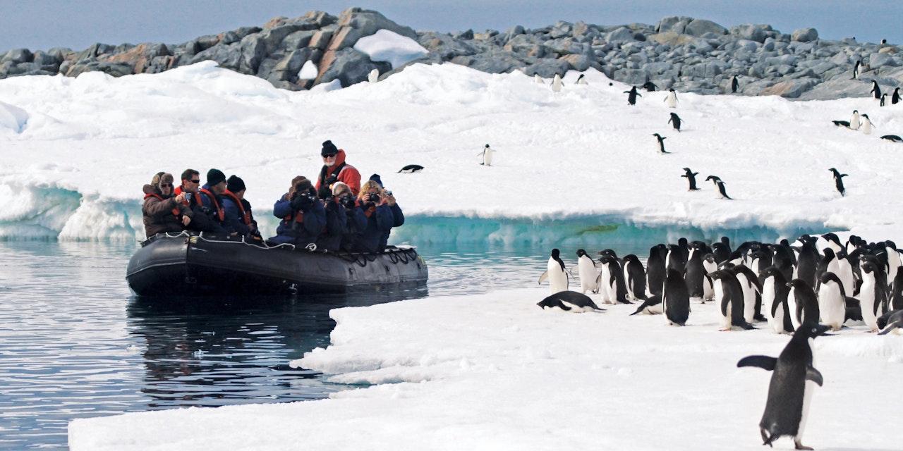 Zodiac langs Adélie pinguïns