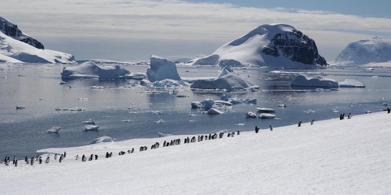 Antarctisch schiereiland