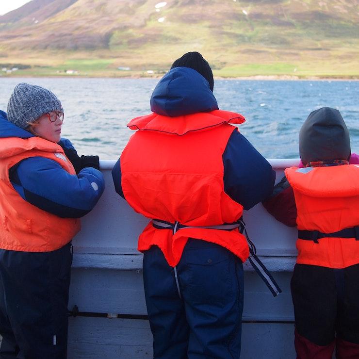 Walvis excursie vanuit Dalvík